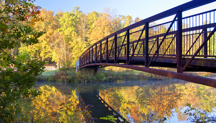 COVID-19 and Virginia State Parks