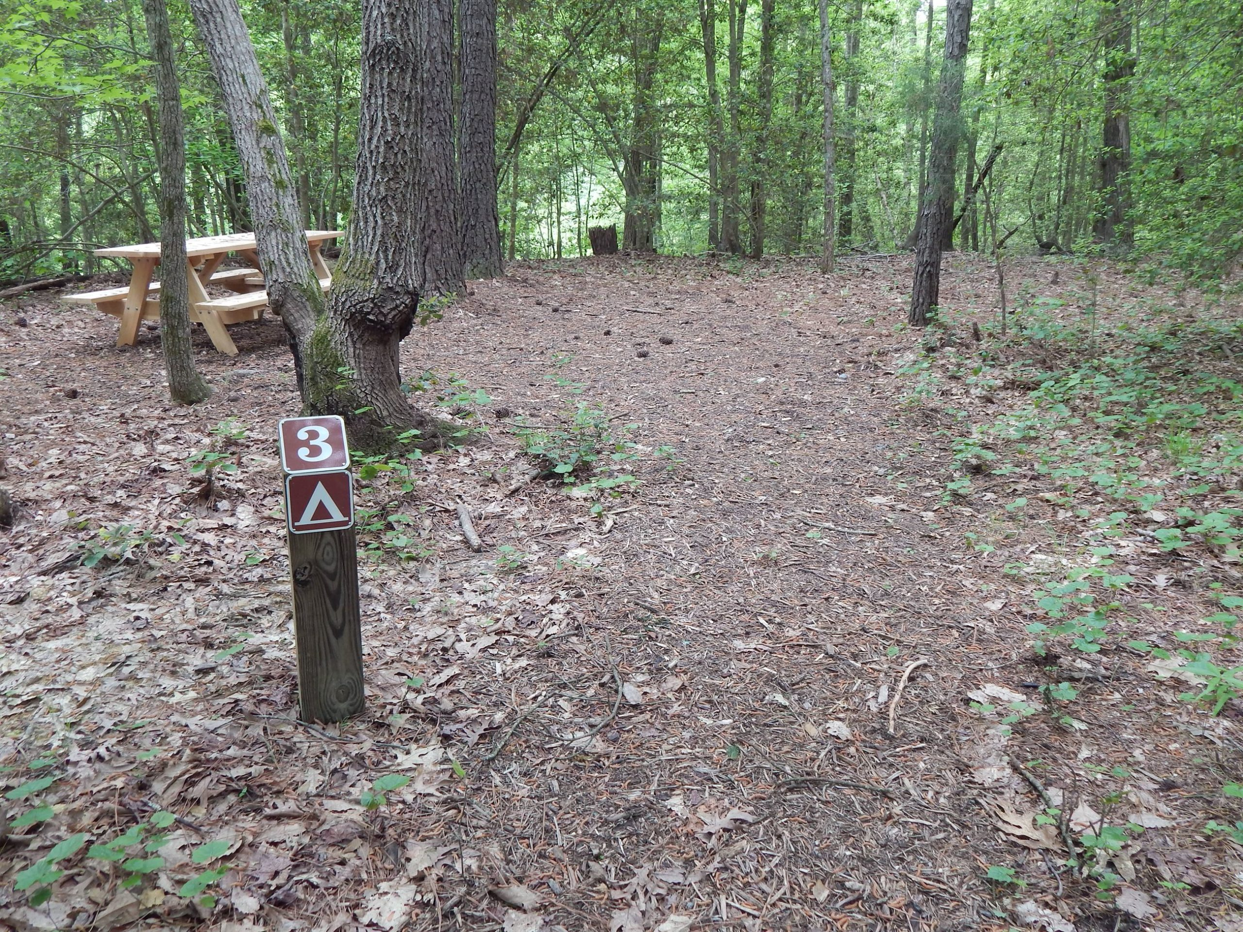 Charles City Co. Opens Public Camping Area at Lawrence Lewis Jr. Park